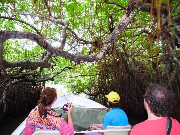 Madu-River-Boat-Safari