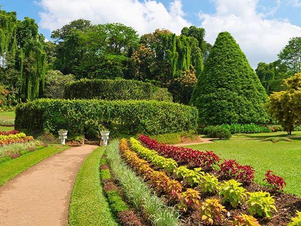 Peradeniya-Botanical-Gardens